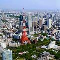 東京タワー空撮