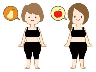 洋ナシ体型とリンゴ体型